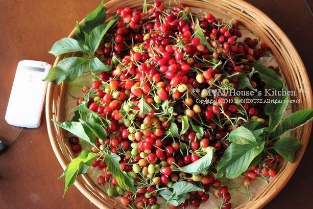 収穫 *:...。.(´∀`人) ☆今日のお弁当♪_c0139375_1245377.jpg