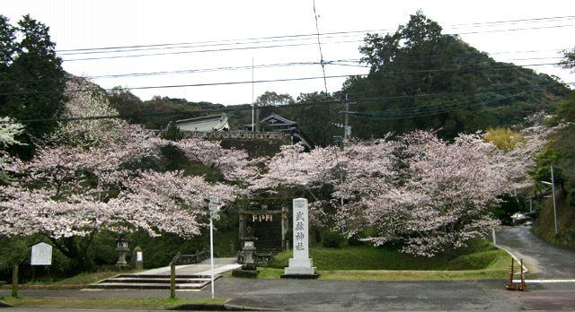 ●もう桜も満開かな・・・_e0070880_1371765.jpg