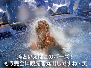 SPLASH JUNGLE_f0144385_18212195.jpg