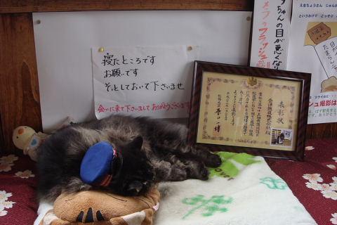 猫の駅長   バス_f0210811_731148.jpg