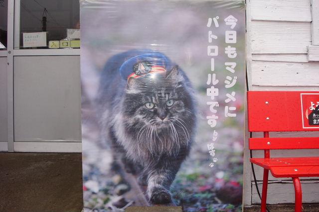 バスのポスター_f0210811_94169.jpg
