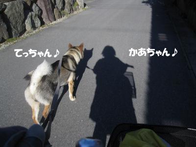 f0143123_2024750.jpg
