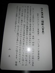 f0166824_23461319.jpg