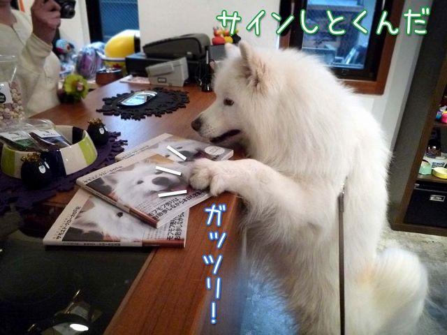 クログ本今日から発売!_c0062832_18385745.jpg