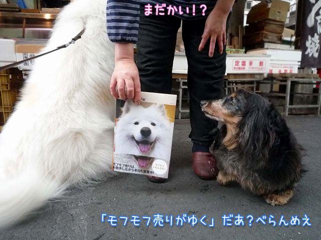 クログ本今日から発売!_c0062832_18392132.jpg