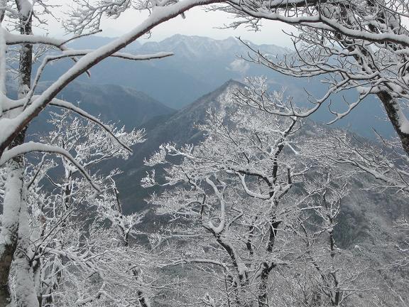 山が白くなっている~  英彦山へ_e0164643_21493333.jpg