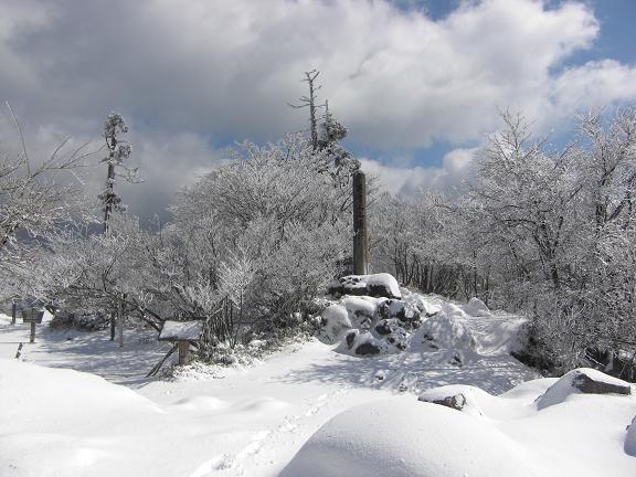 山が白くなっている~  英彦山へ_e0164643_21504230.jpg
