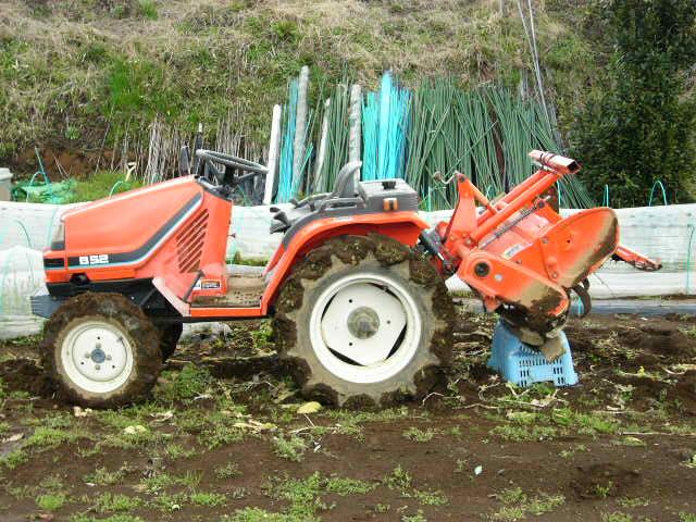 抜いた収穫時期を過ぎたキャベツ&レタス、菜の花・・メキャベツ、ブロッコリーを抜き トラクターで粉砕_c0222448_14533880.jpg