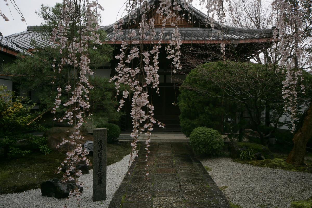 京都 本満寺  1_f0021869_215927.jpg