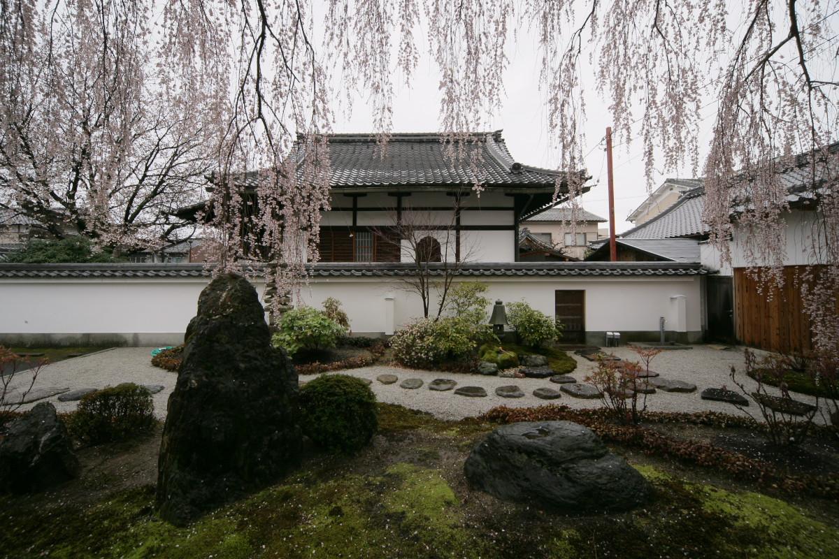 京都 本満寺  1_f0021869_2183661.jpg