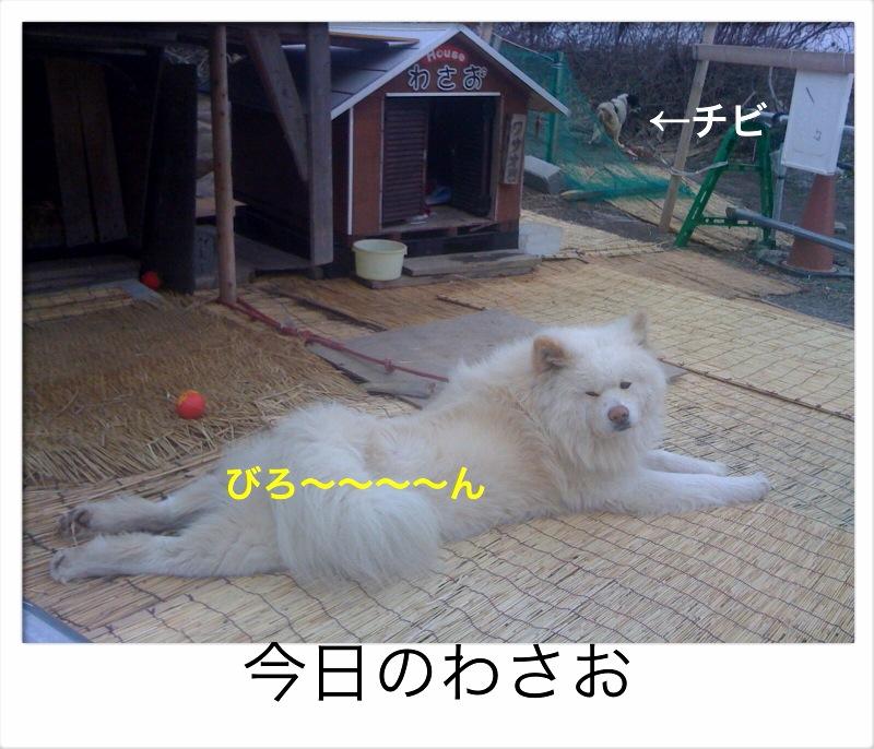 f0168374_1943698.jpg