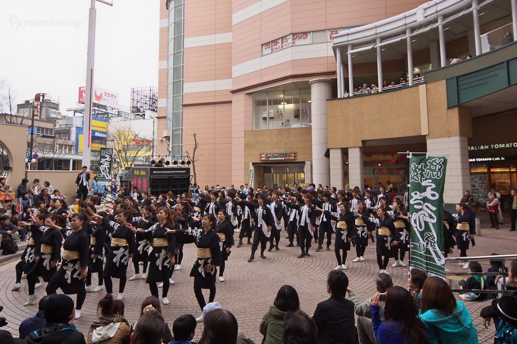 がんこ祭り2010:その4_c0187584_22374355.jpg