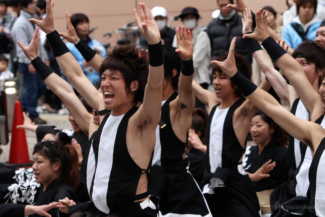 がんこ祭り2010:その4_c0187584_22382953.jpg