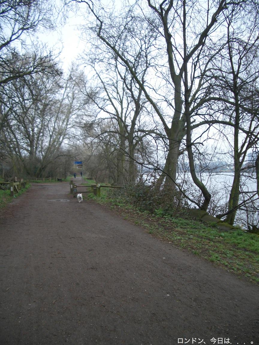 川沿いをお散歩_a0137487_2101487.jpg