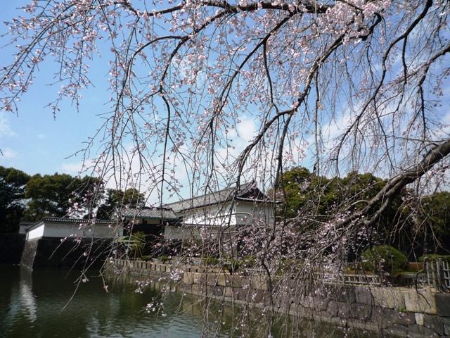 THE WESTIN TOKYO Executive Club _a0127090_2136434.jpg