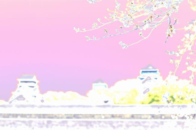 f0129510_1110539.jpg