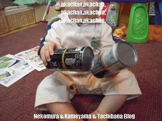 f0167314_1001213.jpg