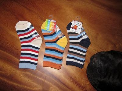 靴下コレクション_e0192217_755855.jpg