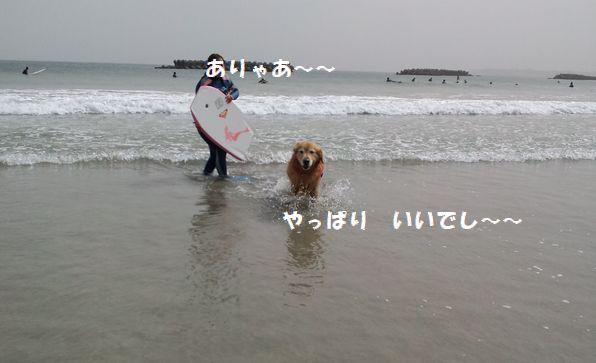 b0127531_14384918.jpg