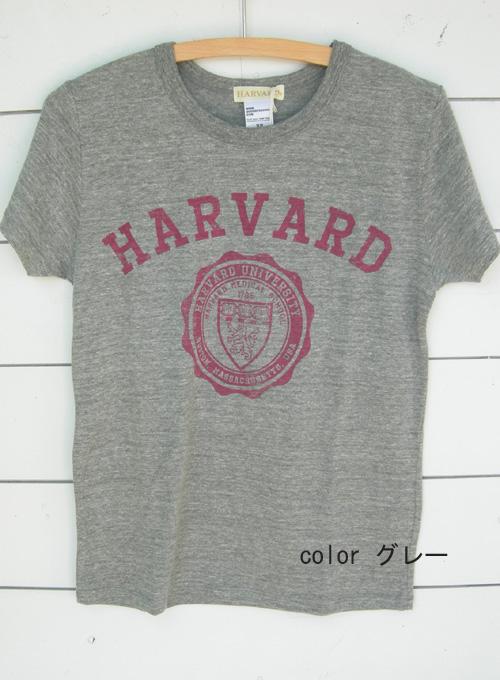 セムインターナショナル 英字半袖Tシャツ_a0130646_1203421.jpg