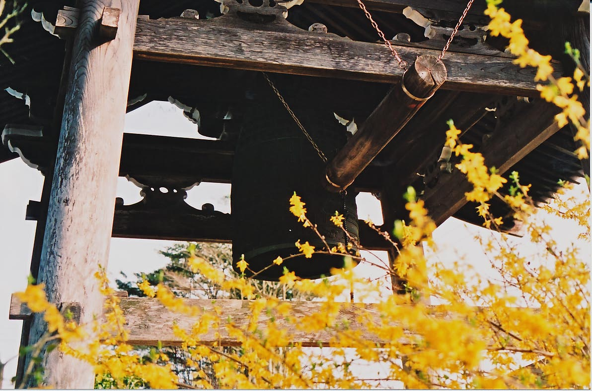 花の寺_e0156251_0435145.jpg