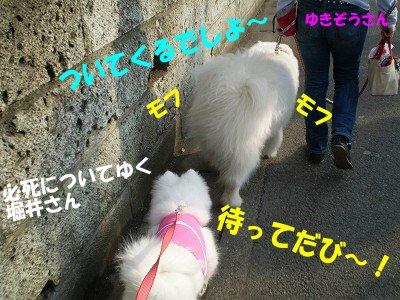 a0166954_1930555.jpg