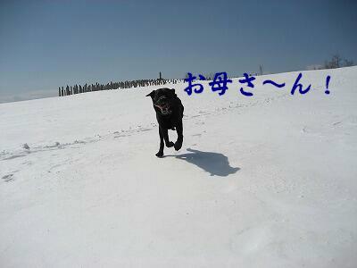 f0146769_0123659.jpg