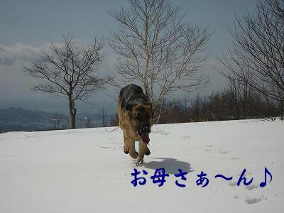 f0146769_0125272.jpg