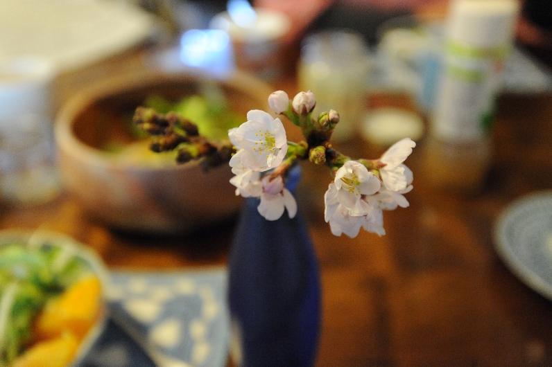 花瓶の桜@食卓_d0056382_9455738.jpg