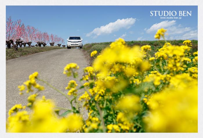 冬景色から一転、春へ..._c0210599_18492761.jpg