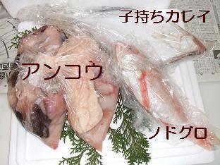 f0179203_20125684.jpg