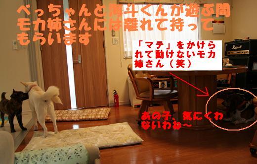 f0121712_16181492.jpg