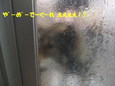 f0143123_19513550.jpg