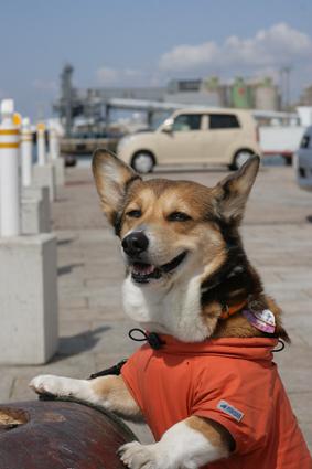 春の海〜!_b0031538_237323.jpg