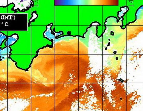 志摩 遠州灘の潮は・・・ 【カジキ・マグロ トローリング】_f0009039_1150964.jpg