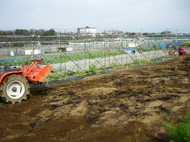 今日も畝作り・・貴重な晴れ間を使って 土を耕します。_c0222448_12202190.jpg