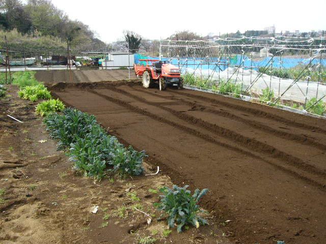 今日も畝作り・・貴重な晴れ間を使って 土を耕します。_c0222448_12203866.jpg