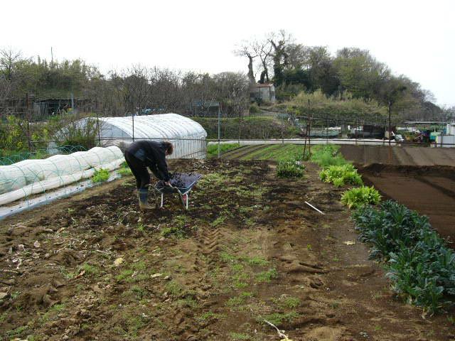 今日も畝作り・・貴重な晴れ間を使って 土を耕します。_c0222448_12204359.jpg
