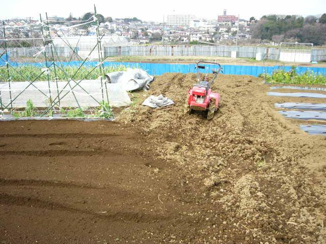 今日も畝作り・・貴重な晴れ間を使って 土を耕します。_c0222448_12205029.jpg