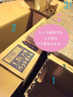 b0177078_11155022.jpg