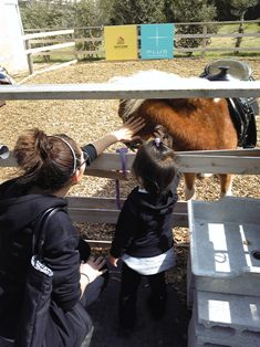 あいたんの初乗馬 ~Airi\'s first horseback riding~_c0105183_1455373.jpg