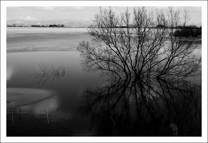 静寂の水面_c0170584_2261957.jpg
