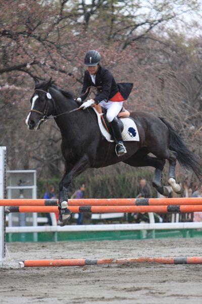 馬事公苑桜祭り_d0148902_14141959.jpg