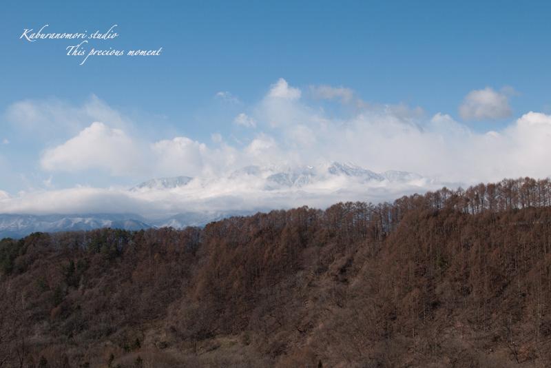 寒さが戻りながらも春が来てますね_c0137403_1934192.jpg