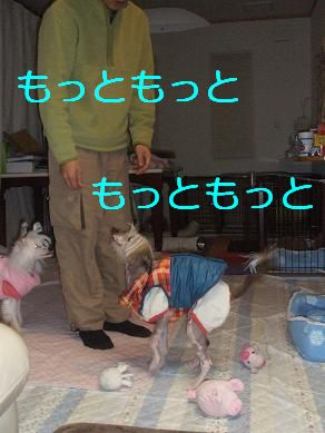 f0179203_17105142.jpg