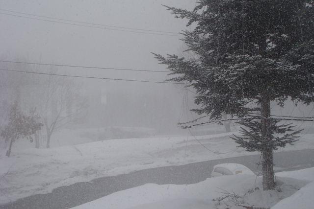 3月 29日  月曜  大雪_f0210811_15341242.jpg