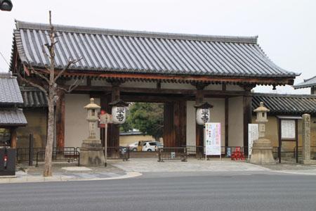 東寺でも咲き始めた_e0048413_2174259.jpg