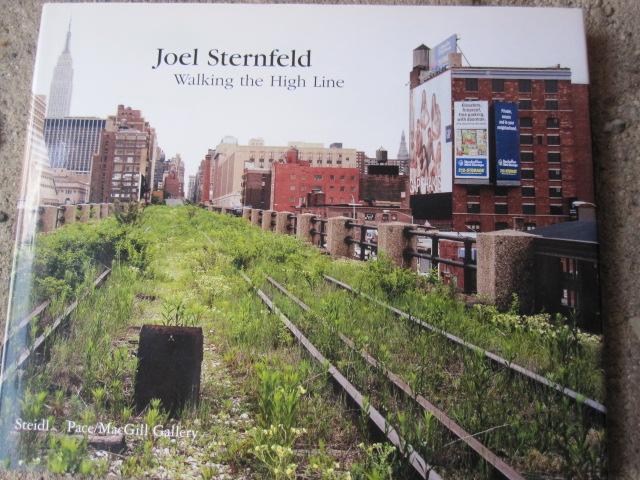 Walking the High Line_c0200314_13235487.jpg