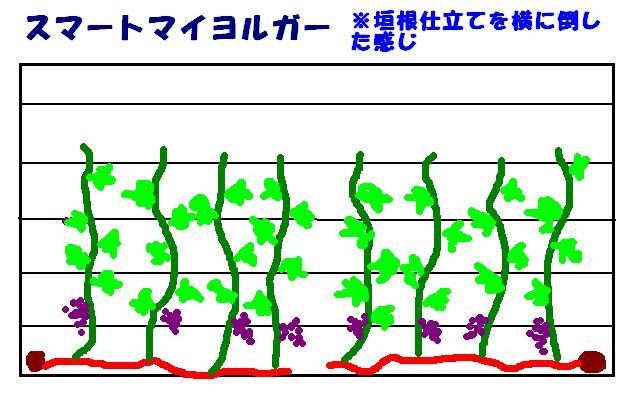 b0094717_1011259.jpg