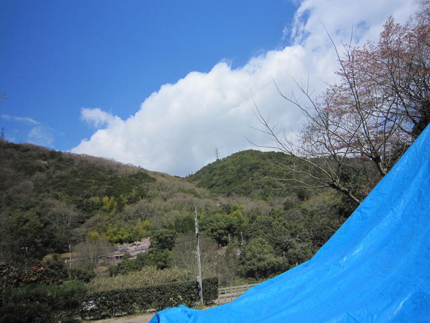 登り窯アルバム~釉掛け~窯詰め_e0126218_23401447.jpg